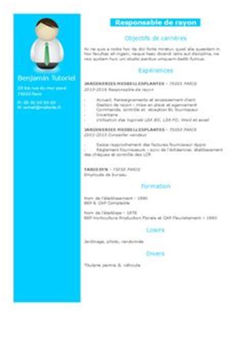 New updated curriculum vitae format